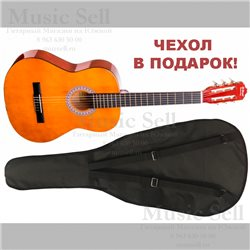 N.Amati Small Guitar Classic Natural + Чехол!