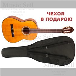 Valencia Guitar Classic Natural + Чехол!