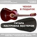 N.Amati Guitar Classic Red + Чехол!