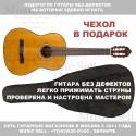 Valencia Guitar Classic Natural + Чехол!